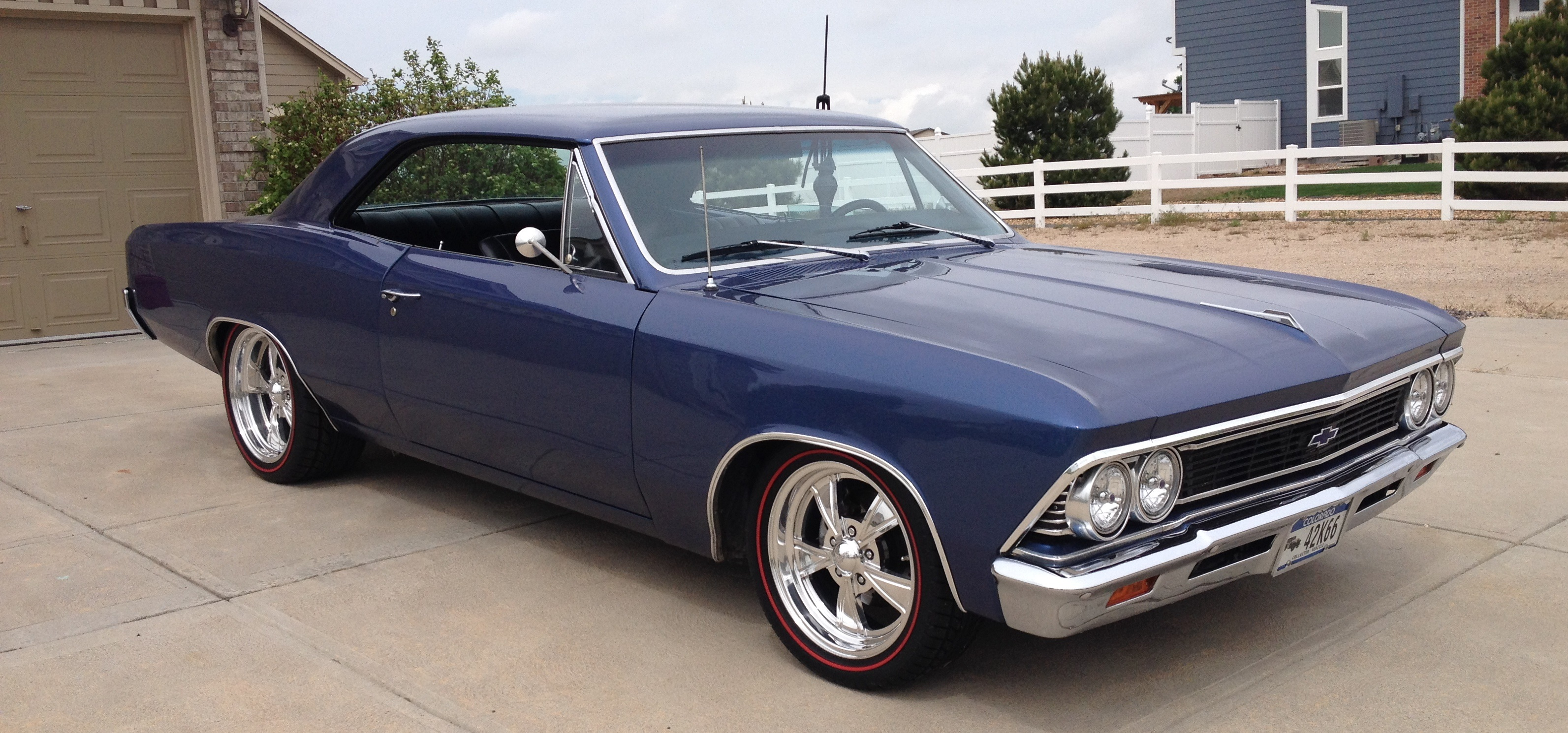 Muscle Cars - :